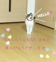 Love Collection-ラブコレ-【小林】のブログを見る